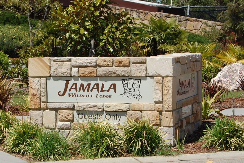 Jamala Wildlife Lodge- AnExperience